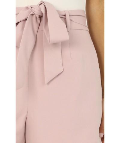 Resolution Shorts In Blush